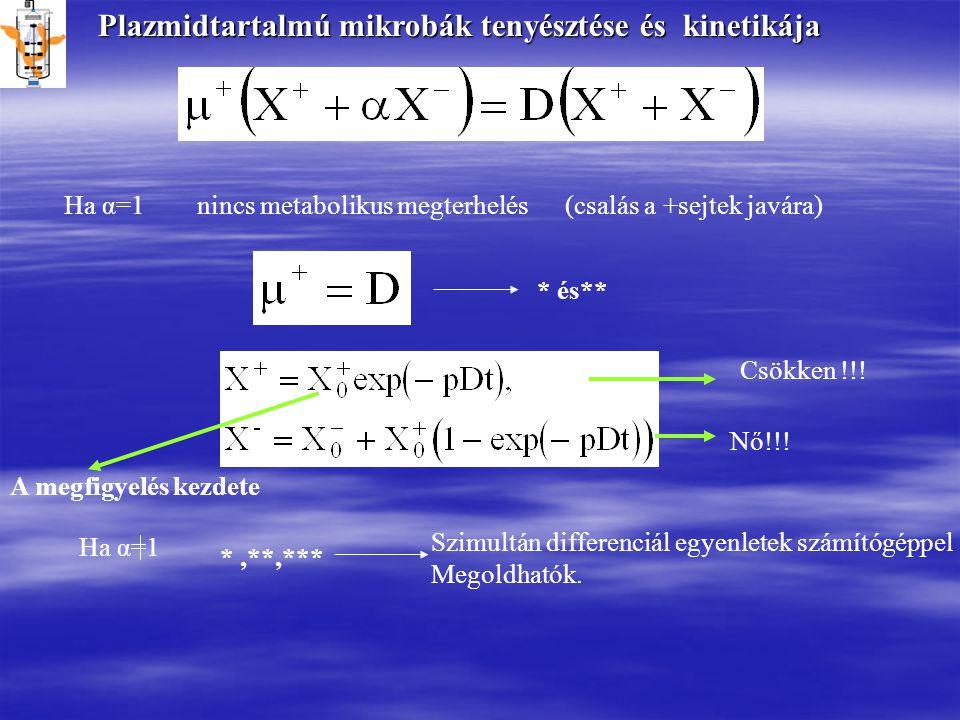 Plazmidtartalmú mikrobák tenyésztése és kinetikája Ha α=1 nincs metabolikus megterhelés (csalás a +sejtek javára) * és** A megfigyelés kezdete Csökken !!.