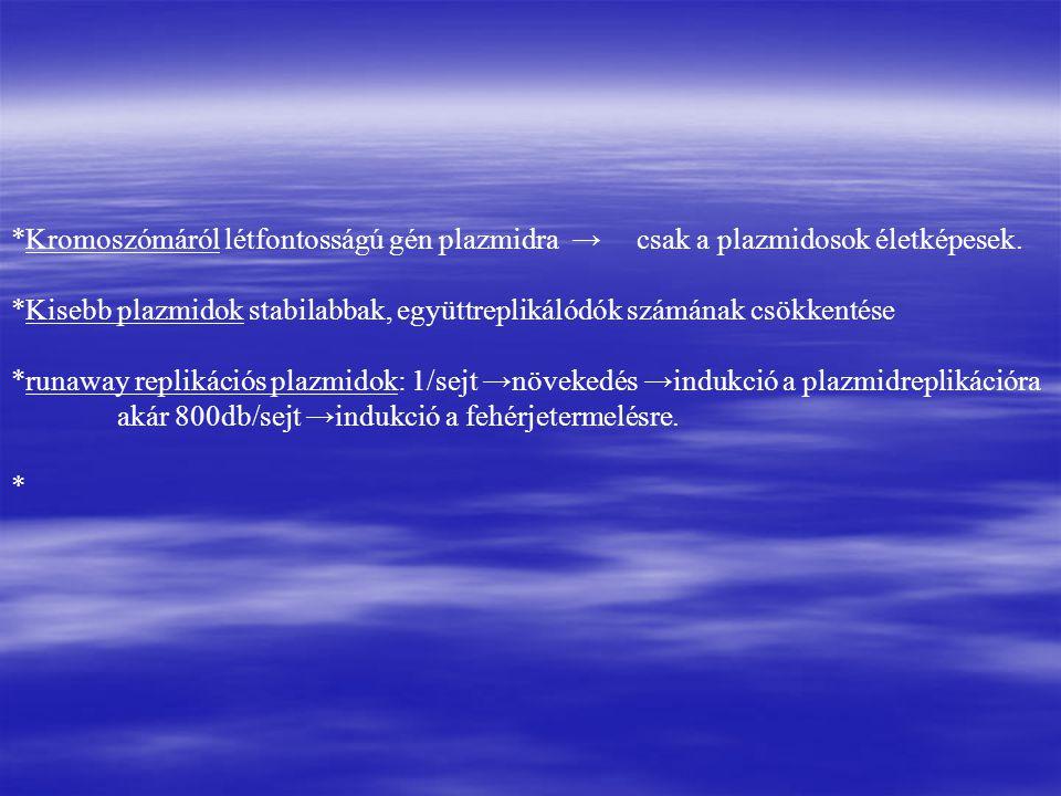 *Kromoszómáról létfontosságú gén plazmidra → csak a plazmidosok életképesek.