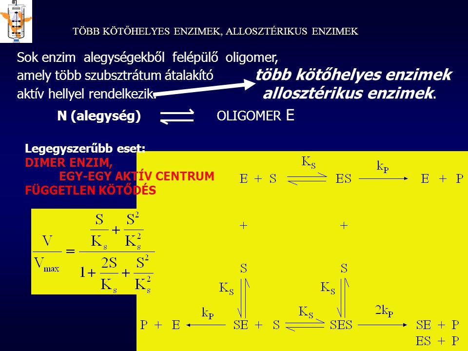 TÖBB KÖTŐHELYES ENZIMEK, ALLOSZTÉRIKUS ENZIMEK Sok enzim alegységekből felépülő oligomer, amely több szubsztrátum átalakító több kötőhelyes enzimek ak