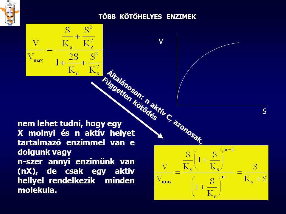 TÖBB KÖTŐHELYES ENZIMEK Általánosan: n aktív C, azonosak, Független kötődés nem lehet tudni, hogy egy X molnyi és n aktív helyet tartalmazó enzimmel v