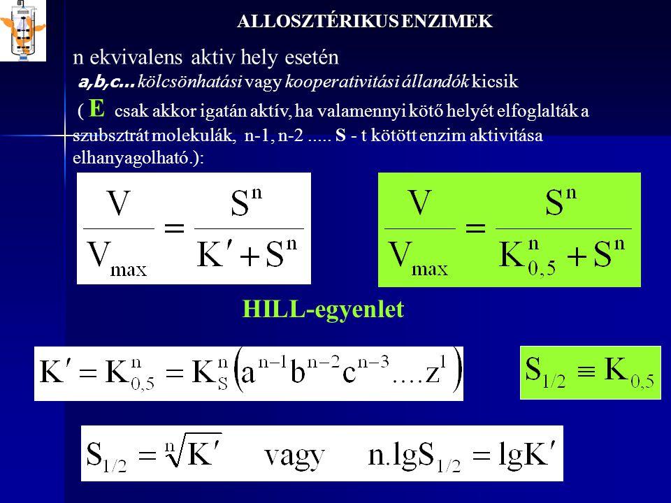 ALLOSZTÉRIKUS ENZIMEK HILL-egyenlet n ekvivalens aktiv hely esetén a,b,c... kölcsönhatási vagy kooperativitási állandók kicsik ( E csak akkor igatán a