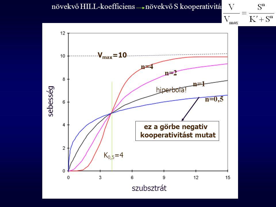növekvő HILL-koefficiens növekvő S kooperativitás n=4 n=2 n=1 n=0,5 V max =10 K 0,5 =4 hiperbola! ez a görbe negativ kooperativitást mutat sebesség sz