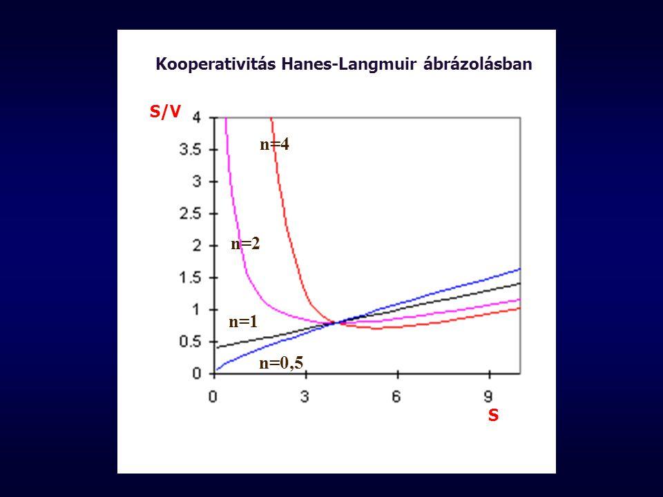 n=4 n=2 n=1 n=0,5 S/V S Kooperativitás Hanes-Langmuir ábrázolásban