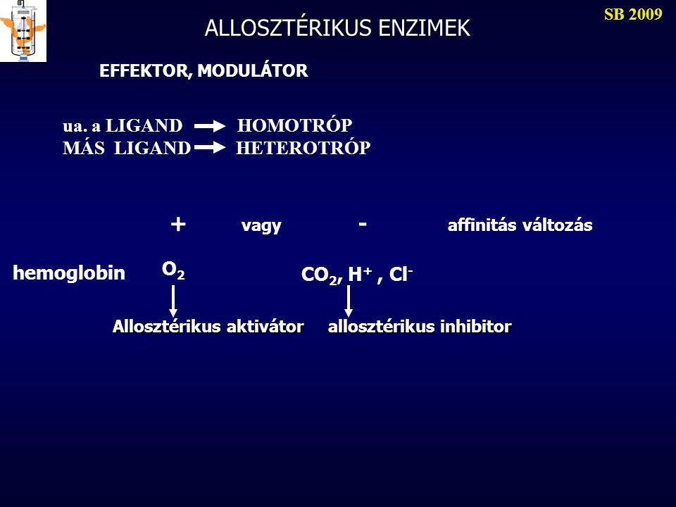 ALLOSZTÉRIKUS ENZIMEK SB 2009 EFFEKTOR, MODULÁTOR ua. a LIGAND HOMOTRÓP MÁS LIGAND HETEROTRÓP + vagy - affinitás változás hemoglobin O2O2 CO 2, H +, C