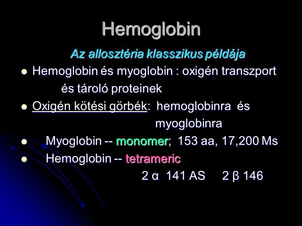 Hemoglobin Az allosztéria klasszikus példája Hemoglobin és myoglobin : oxigén transzport Hemoglobin és myoglobin : oxigén transzport és tároló proteinek és tároló proteinek Oxigén kötési görbék: hemoglobinra és Oxigén kötési görbék: hemoglobinra és Oxigén kötési görbék Oxigén kötési görbék myoglobinra myoglobinra Myoglobin -- monomer; 153 aa, 17,200 Ms Myoglobin -- monomer; 153 aa, 17,200 Ms Hemoglobin -- tetrameric Hemoglobin -- tetrameric 2 α 141 AS 2 β 146 2 α 141 AS 2 β 146