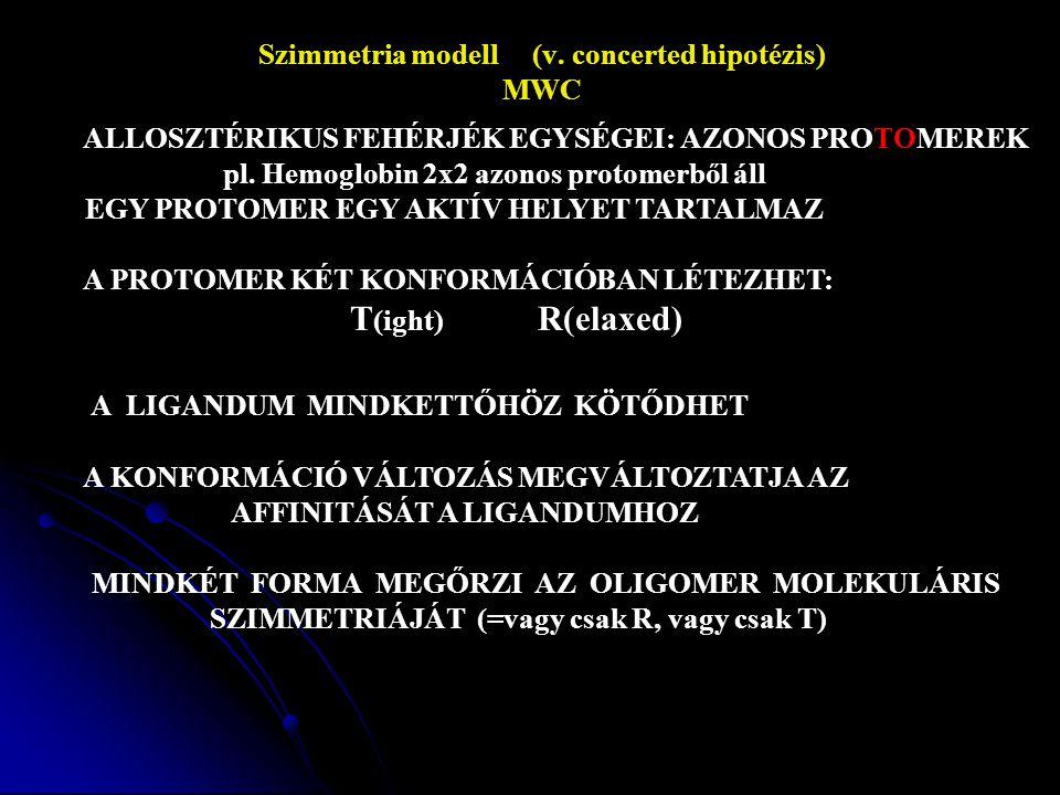 Szimmetria modell (v.