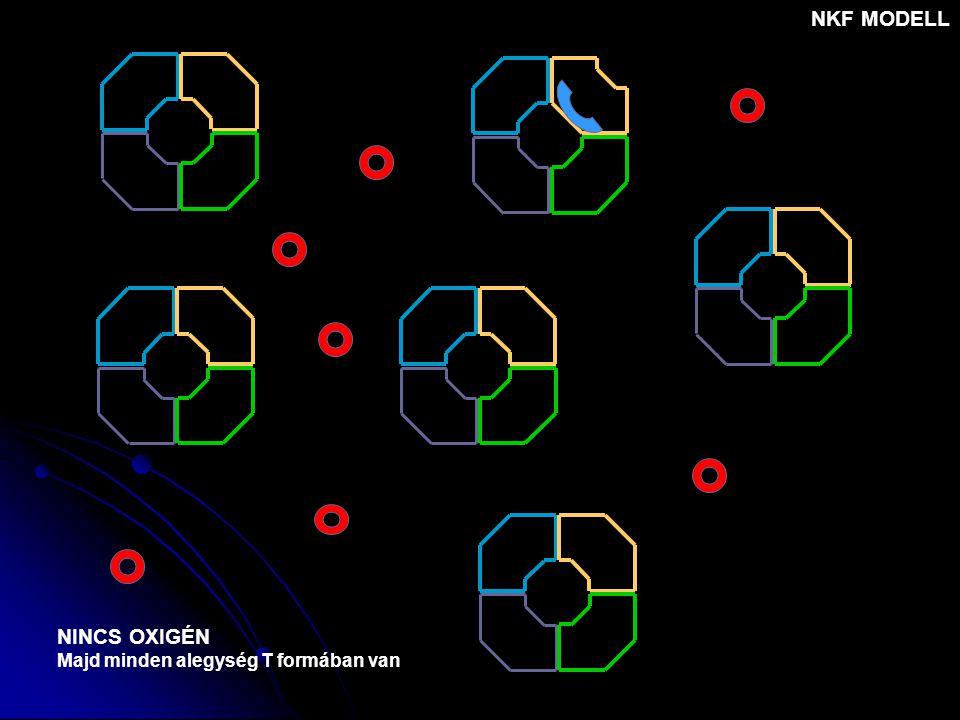 NINCS OXIGÉN Majd minden alegység T formában van NKF MODELL