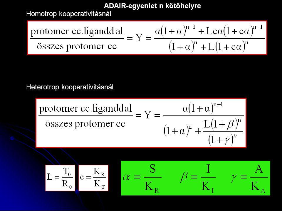 Heterotrop kooperativitásnál Homotrop kooperativitásnál ADAIR-egyenlet n kötőhelyre