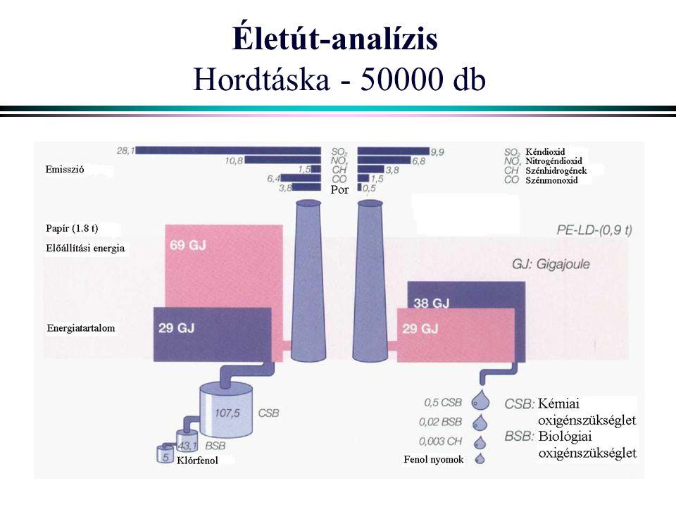Életút-analízis Hordtáska - 50000 db
