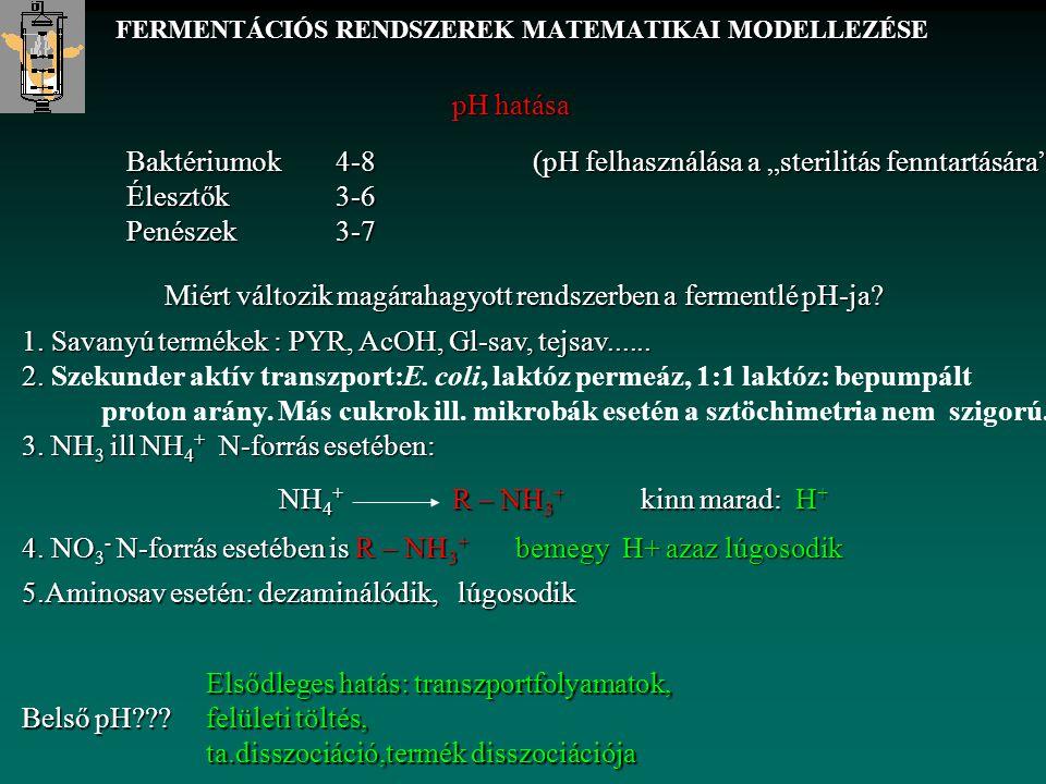"""FERMENTÁCIÓS RENDSZEREK MATEMATIKAI MODELLEZÉSE pH hatása Baktériumok 4-8 Élesztők 3-6 Penészek 3-7 (pH felhasználása a """"sterilitás fenntartására"""") Mi"""