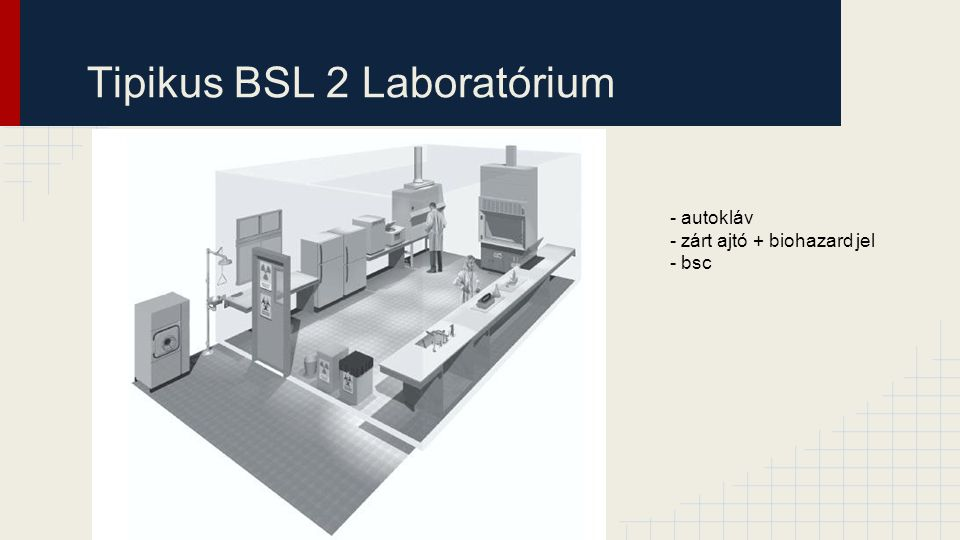 Tipikus BSL 2 Laboratórium - autokláv - zárt ajtó + biohazard jel - bsc