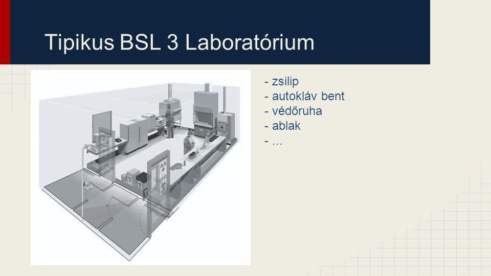 Tipikus BSL 3 Laboratórium - zsilip - autokláv bent - védőruha - ablak -...