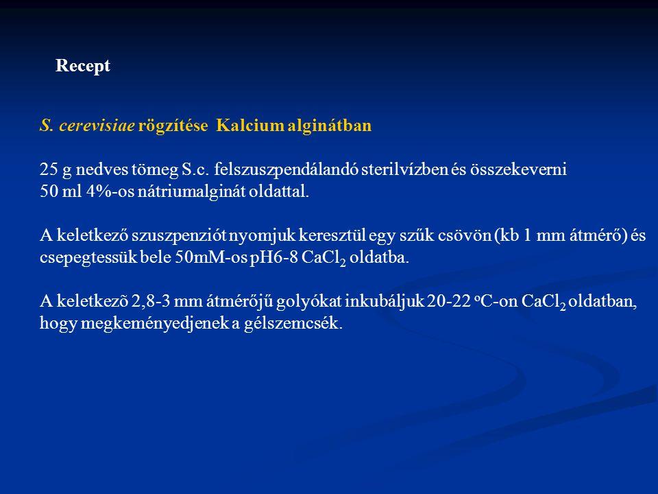 S.cerevisiae rögzítése Kalcium alginátban 25 g nedves tömeg S.c.