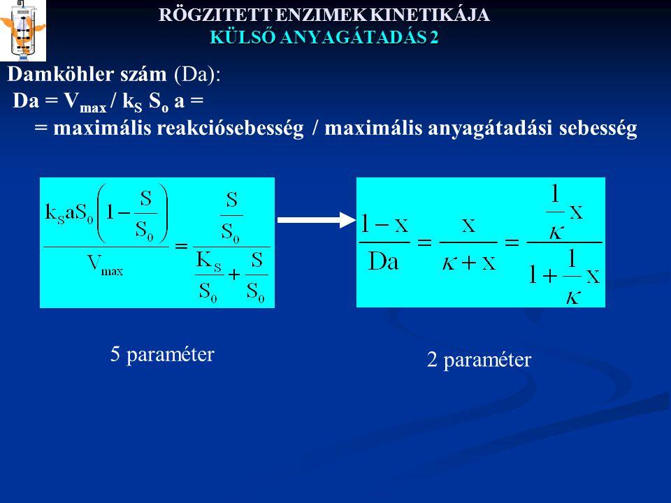 RÖGZITETT ENZIMEK KINETIKÁJA KÜLSŐ ANYAGÁTADÁS 2 Damköhler szám (Da): Da = V max / k S S o a = = maximális reakciósebesség / maximális anyagátadási sebesség 5 paraméter 2 paraméter