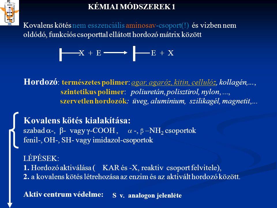 KÉMIAI MÓDSZEREK 1 Kovalens kötés nem esszenciális aminosav-csoport(!) és vizben nem oldódó, funkciós csoporttal ellátott hordozó mátrix között X + E E + X Hordozó : természetes polimer: agar, agaróz, kitin, cellulóz, kollagén,..., szintetikus polimer: poliuretán, polisztirol, nylon,...,agar, agaróz, kitin, cellulóz szervetlen hordozók: üveg, alumínium, szilikagél, magnetit,...