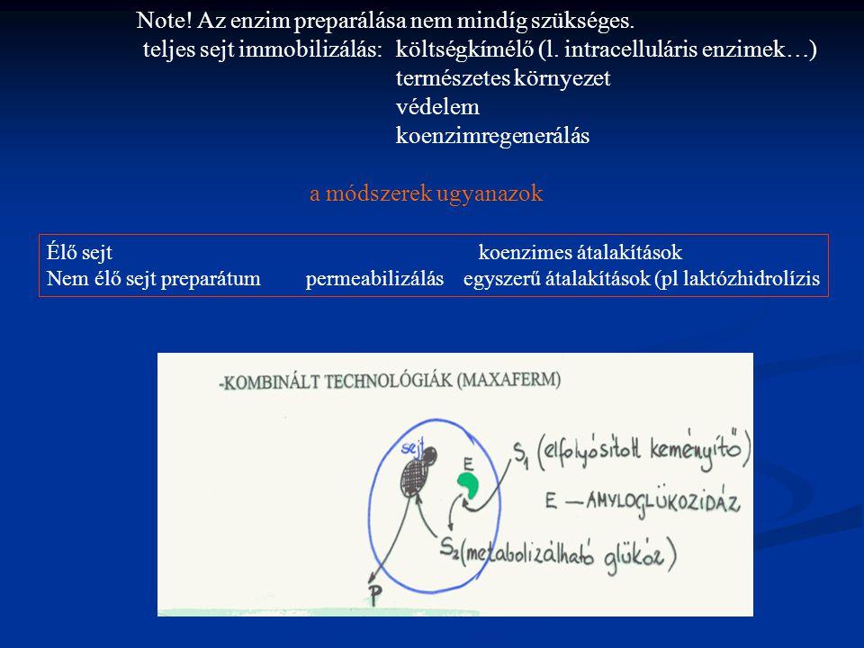 Note.Az enzim preparálása nem mindíg szükséges. teljes sejt immobilizálás: költségkímélő (l.