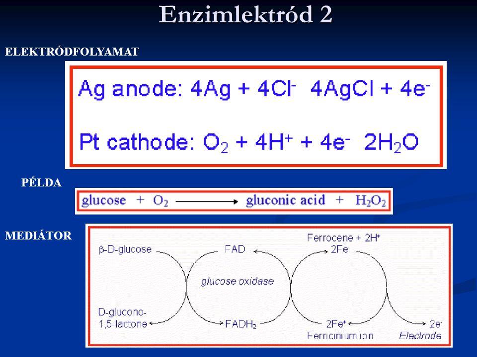 Enzimlektród 2 ELEKTRÓDFOLYAMAT PÉLDA MEDIÁTOR