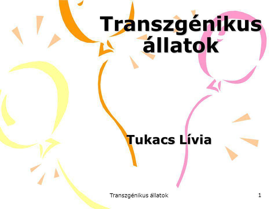Transzgénikus állatok 1 Tukacs Lívia