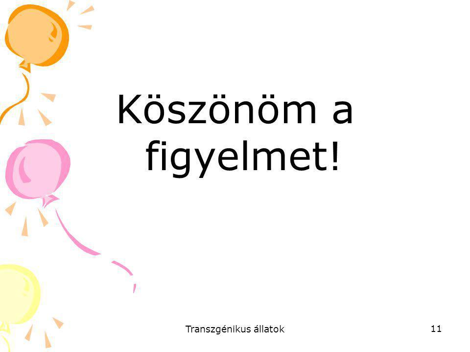 Transzgénikus állatok 11 Köszönöm a figyelmet!