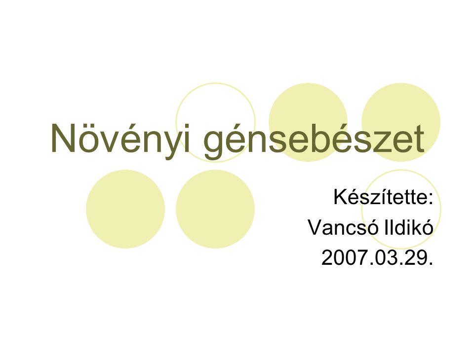 Növényi génsebészet Készítette: Vancsó Ildikó 2007.03.29.