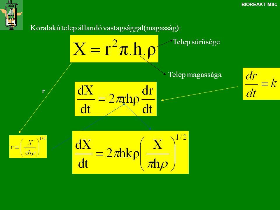 BIOREAKT-MSc integráljukahol A telep tömege négyzetesen nő az időben, míg a sugár lineárisan Pellet növekedés: hasonlóan……….