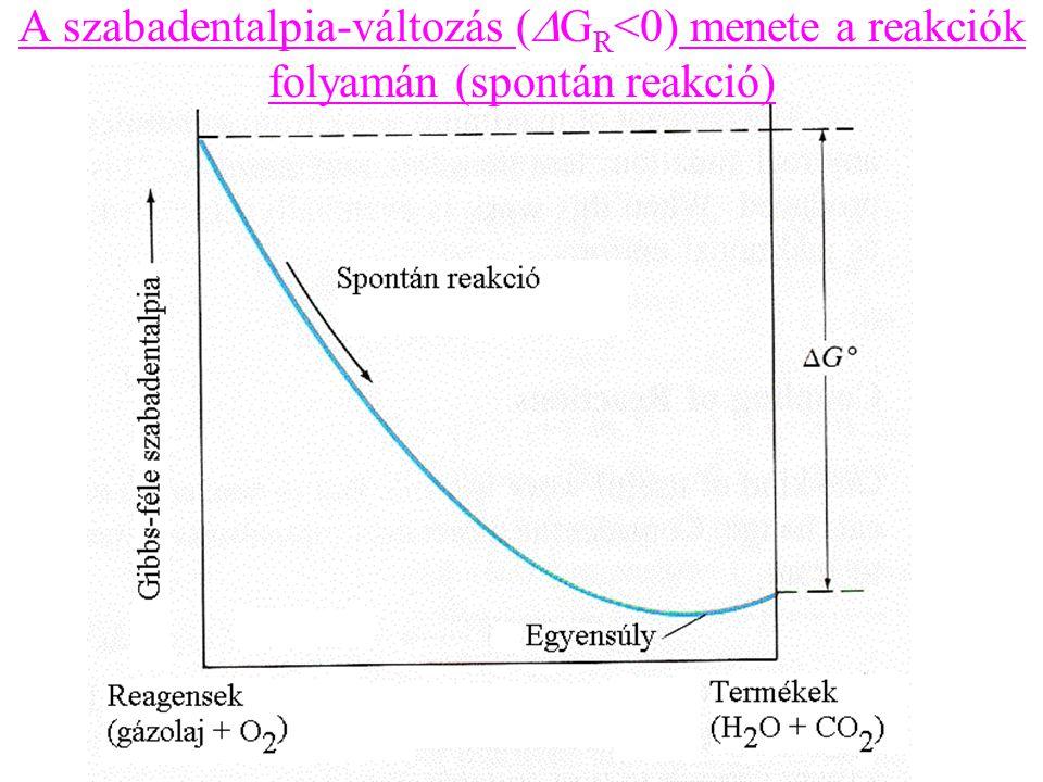 A szabadentalpia-változás (  G R <0) menete a reakciók folyamán (spontán reakció)