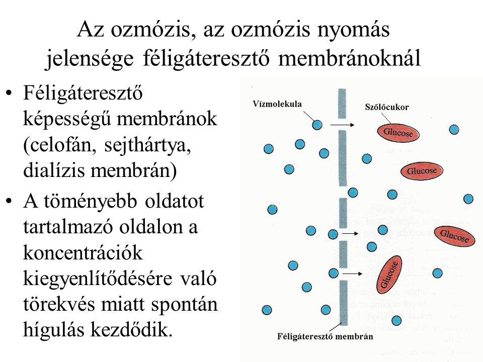 Az ozmózis, az ozmózis nyomás jelensége féligáteresztő membránoknál Féligáteresztő képességű membránok (celofán, sejthártya, dialízis membrán) A tömén