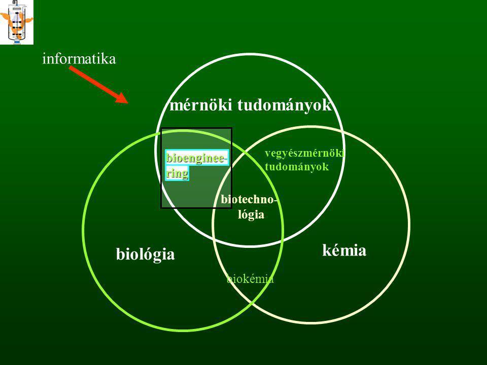 biotechno- lógia mérnöki tudományok bioenginee bioenginee- ring vegyészmérnöki tudományok kémia biológia biokémia informatika