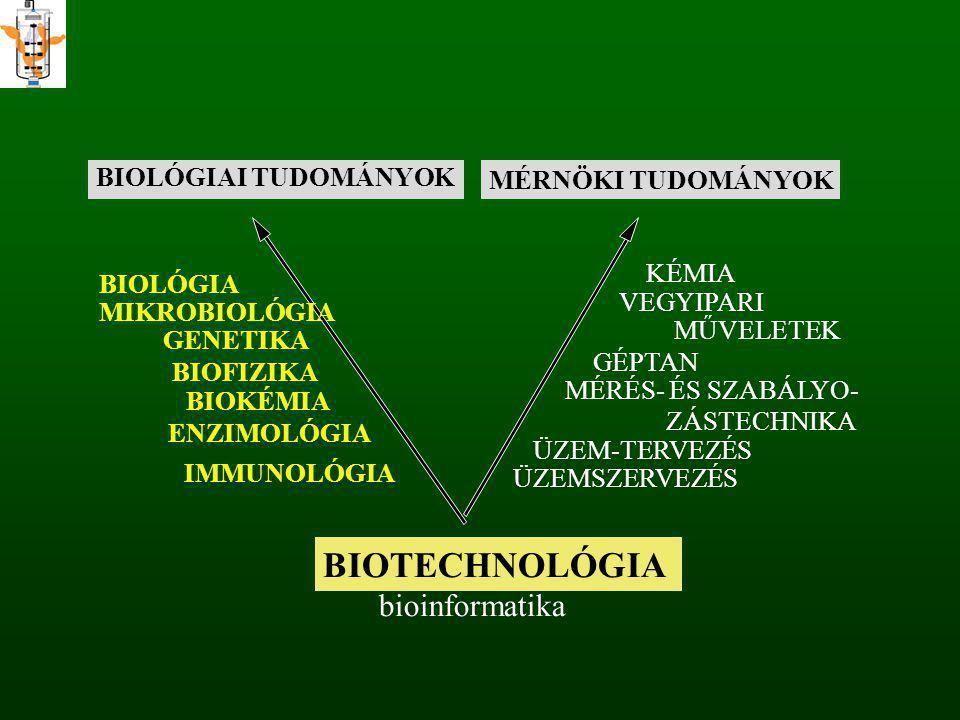 BIOLÓGIAI TUDOMÁNYOK MÉRNÖKI TUDOMÁNYOK BIOTECHNOLÓGIA bioinformatika BIOLÓGIA MIKROBIOLÓGIA GENETIKA BIOFIZIKA BIOKÉMIA ENZIMOLÓGIA KÉMIA VEGYIPARI M