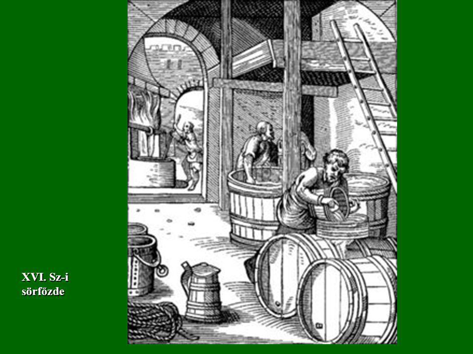 XVI. Sz-i sörfőzde