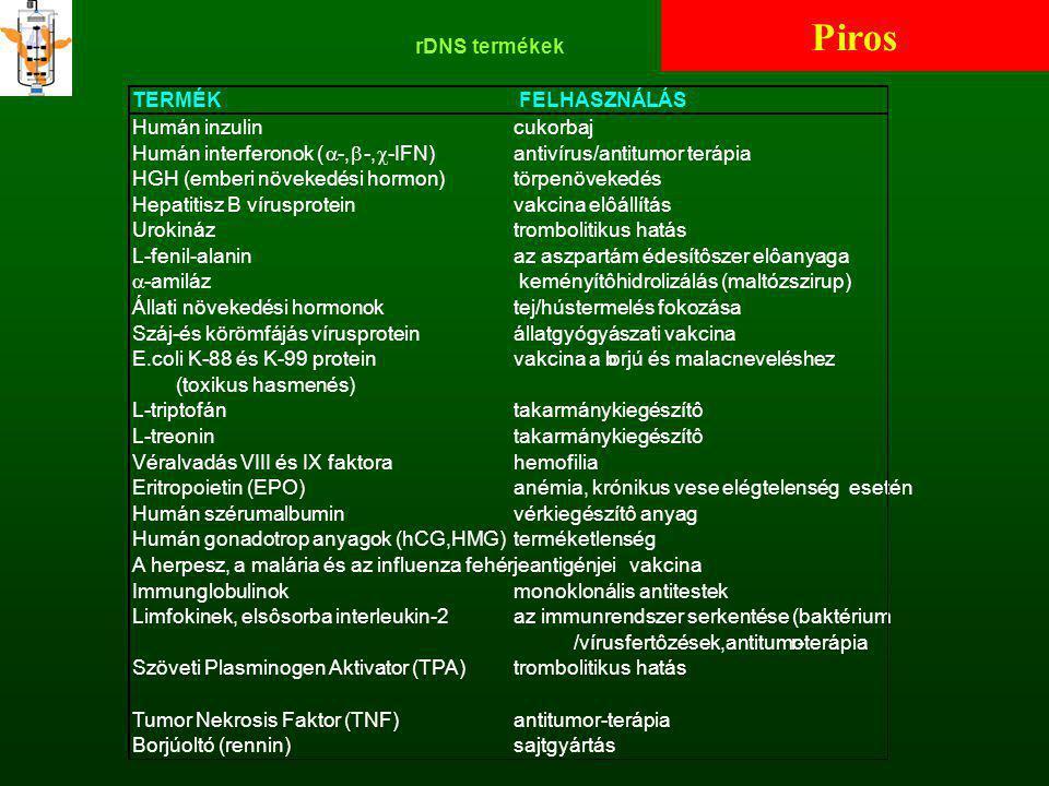 rDNS termékek TERMÉK FELHASZNÁLÁS Humán inzulincukorbaj Humán interferonok (  -,   -IFN)antivírus/antitumor terápia HGH (emberi növekedési hormon)t