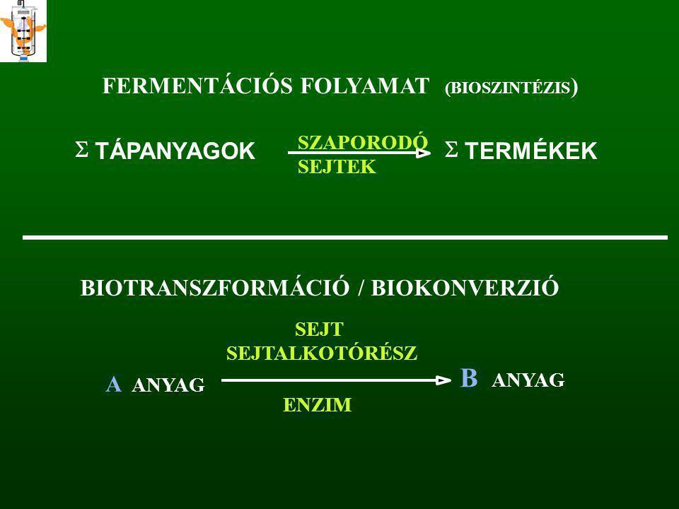 FERMENTÁCIÓS FOLYAMAT (BIOSZINTÉZIS )  TÁPANYAGOK  TERMÉKEK SZAPORODÓ SEJTEK BIOTRANSZFORMÁCIÓ / BIOKONVERZIÓ A ANYAG B SEJT SEJTALKOTÓRÉSZ ENZIM