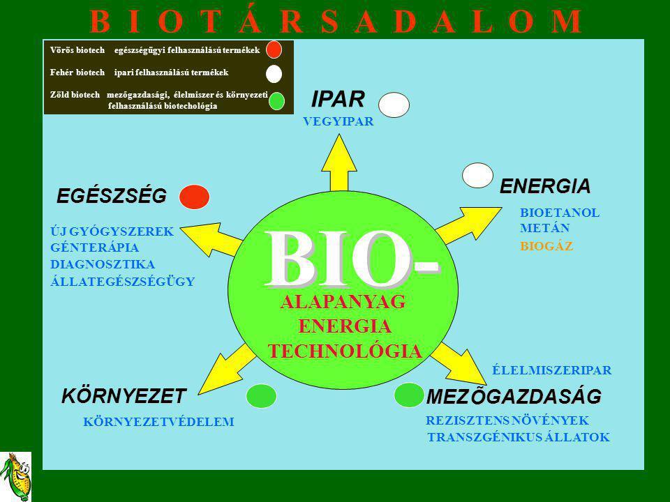 BIO- ALAPANYAG ENERGIA TECHNOLÓGIA IPAR VEGYIPAR EGÉSZSÉG ENERGIA MEZ Õ ÕGAZDASÁG KÖRNYEZET BIOETANOL METÁN ÚJ GYÓGYSZEREK GÉNTERÁPIA DIAGNOSZTIKA KÖR