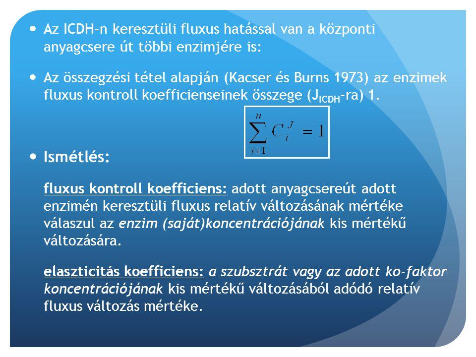 Az ICDH-n keresztüli fluxus hatással van a központi anyagcsere út többi enzimjére is: Az összegzési tétel alapján (Kacser és Burns 1973) az enzimek fl