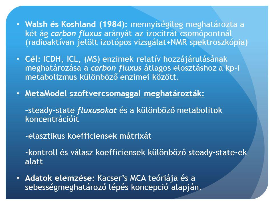 Walsh és Koshland (1984): mennyiségileg meghatározta a két ág carbon fluxus arányát az izocitrát csomópontnál (radioaktívan jelölt izotópos vizsgálat+