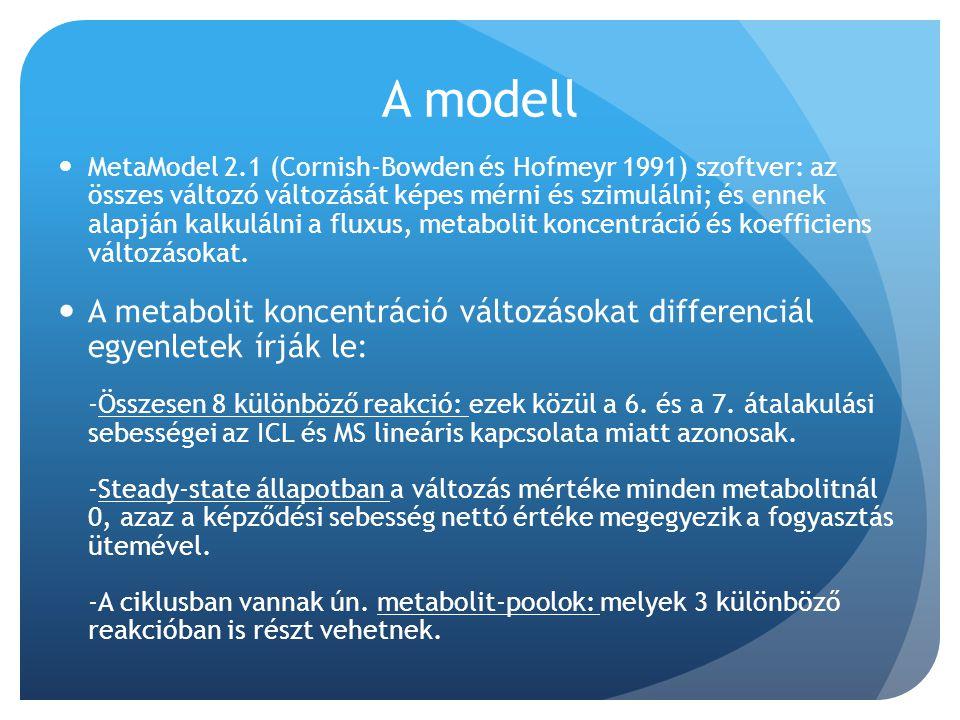 A modell MetaModel 2.1 (Cornish-Bowden és Hofmeyr 1991) szoftver: az összes változó változását képes mérni és szimulálni; és ennek alapján kalkulálni