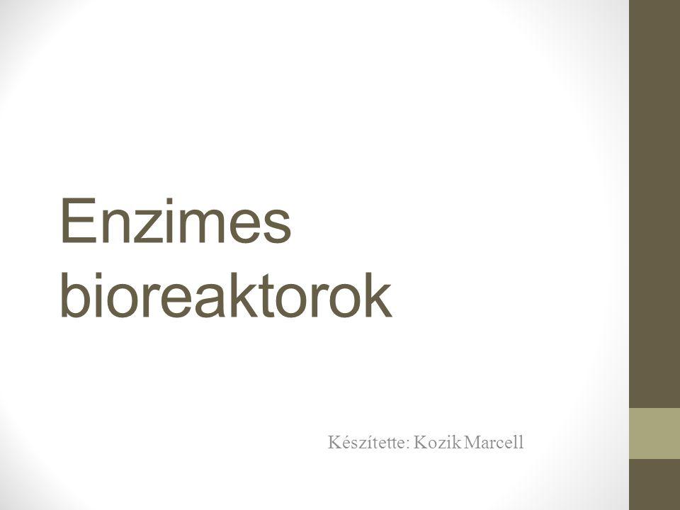 Enzimes bioreaktorok Készítette: Kozik Marcell