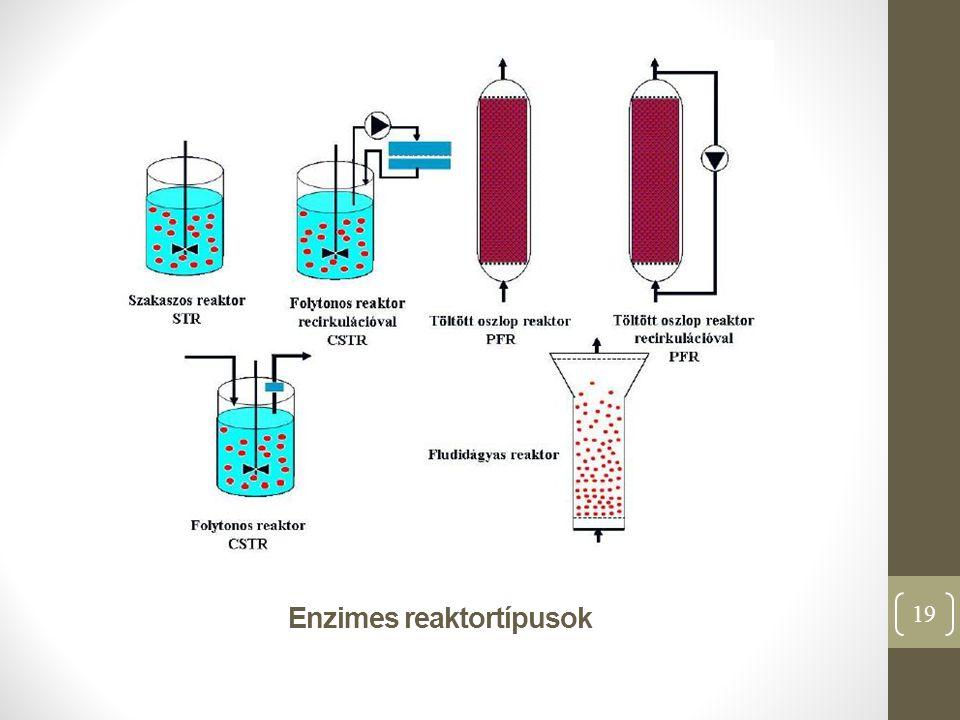 Enzimes reaktortípusok 19