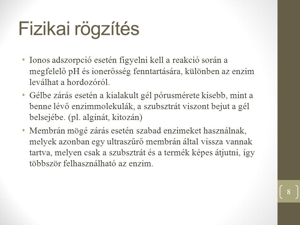 Enzimkinetika 29
