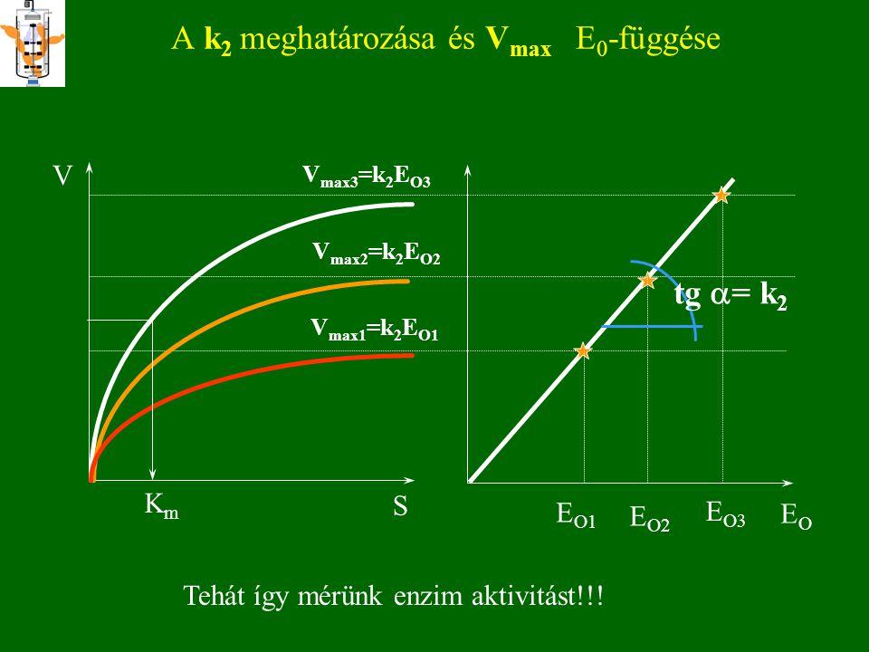 Egyéb grafikus módszerek 2 -K m V max V S (a hiperbola megszerkesztése) V max = v + v S  K m