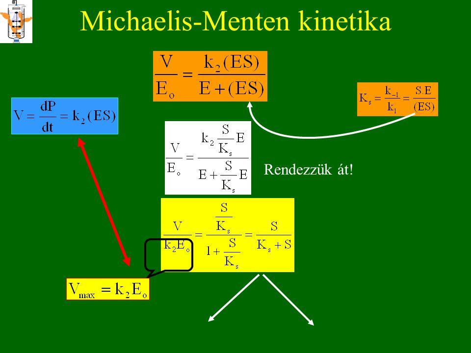 Michaelis-Menten kinetika E + S ES E + P k 1 k k 2 k -2 feltételezések: *k -2 =0 *első lépés gyorsan egyensúlyra jut= RAPID EKVILIBRIUM *stabil ES kom
