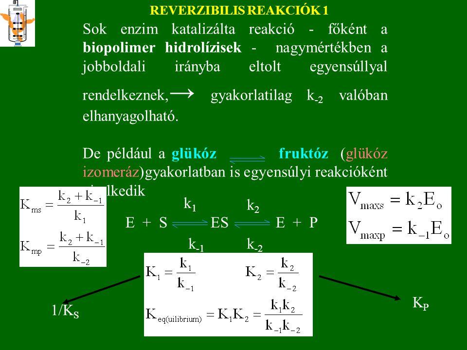 Ms= 60000 1 U/mg k cat =1 s -1 Ha az enzim móltömege 60000 és fajlagos aktivitása 1 U/mg, akkor k cat éppen 1 s -1