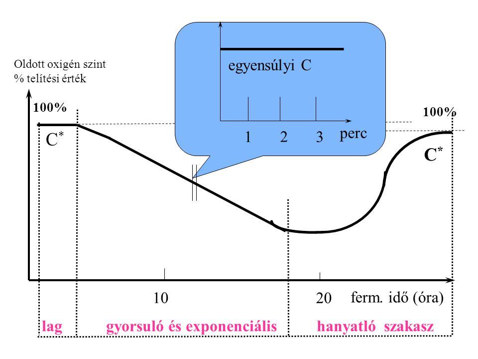 Oldott oxigén szint % telítési érték 1 2 3 perc 10 20 ferm. idő (óra) egyensúlyi C 100% C*C* C*C* lag gyorsuló és exponenciális hanyatló szakasz