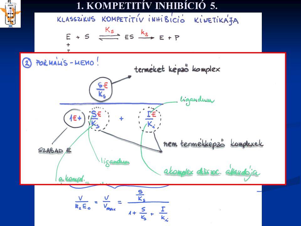 1. KOMPETITÍV INHIBÍCIÓ 6.