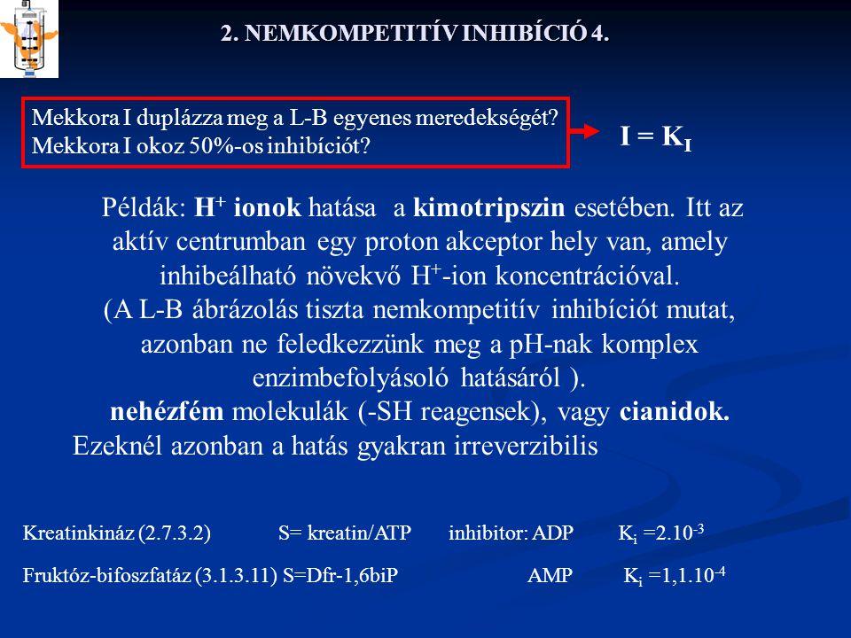 2. NEMKOMPETITÍV INHIBÍCIÓ 4. Példák: H + ionok hatása a kimotripszin esetében. Itt az aktív centrumban egy proton akceptor hely van, amely inhibeálha