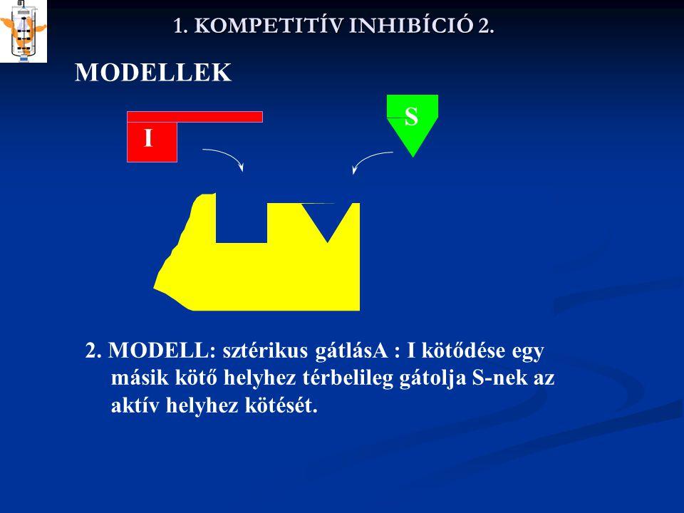 1. KOMPETITÍV INHIBÍCIÓ 2. MODELLEK S I 2. MODELL: sztérikus gátlásA : I kötődése egy másik kötő helyhez térbelileg gátolja S-nek az aktív helyhez köt