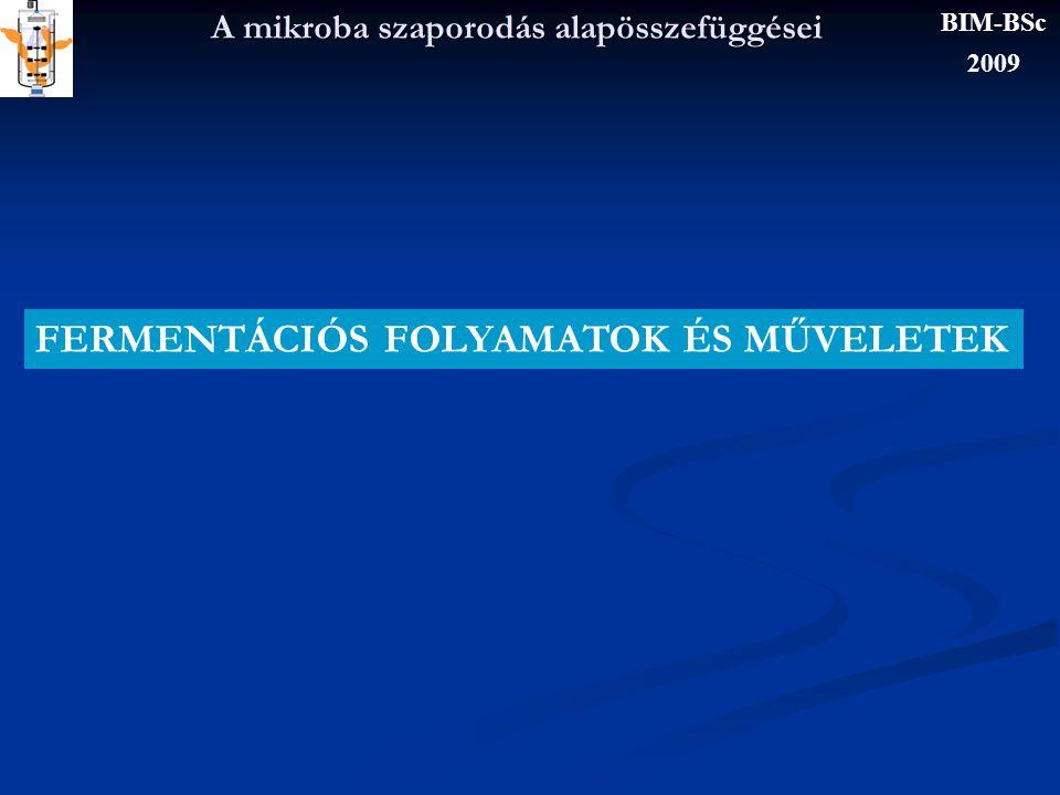 A mikroba szaporodás alapösszefüggései x x0x0 t LAG SZAKASZ GYORSULÓ NÖVEKE- DÉSI SZAKASZ EXPONEN- CIÁLIS FÁZIS HANYATLÓ FÁZIS BIM-BSc 2009