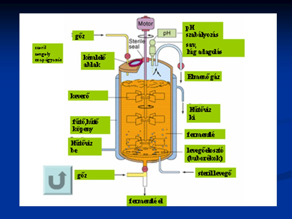 x x x P P P μxμx μxμx μxμx μPμP μPμP μPμP Primer anyagcsere termék Szekunder anyagcsere termék profázis idiofázis t t t t t t MONOD modell-család GAEDEN-féle termékképződési típusok