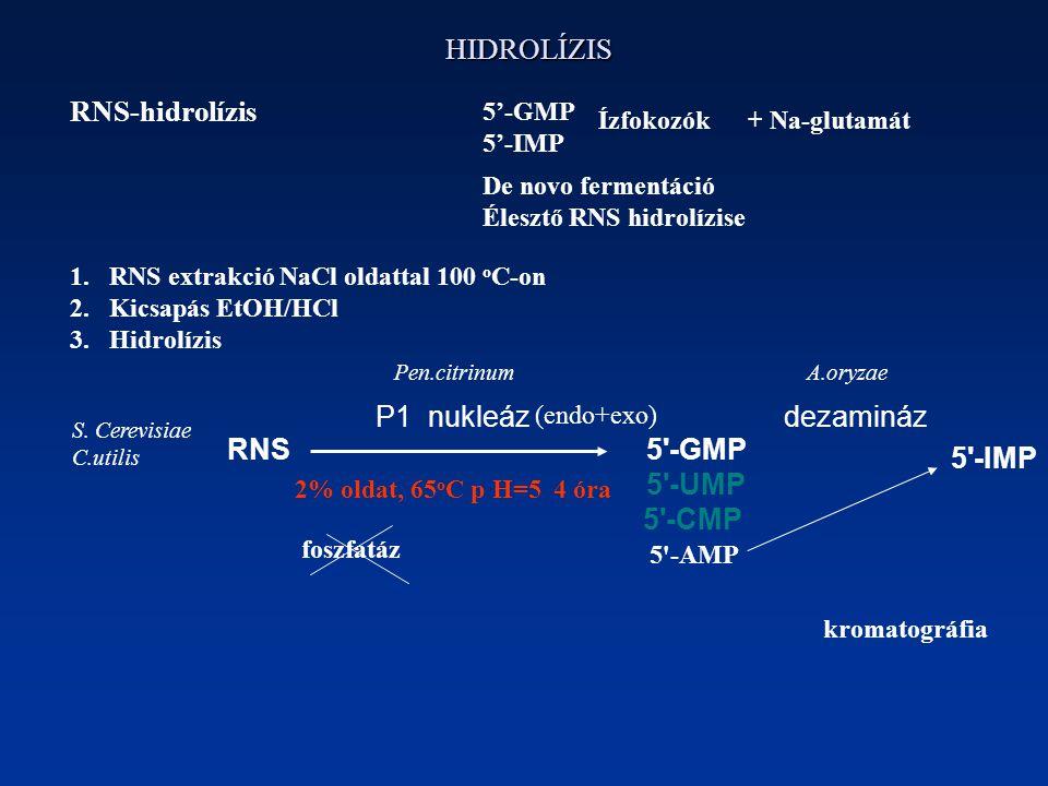 HIDROLÍZIS RNS-hidrolízis P1 nukleázdezamináz RNS5 -GMP 5 -UMP 5 -CMP 5 -IMP 5'-GMP 5'-IMP Ízfokozók + Na-glutamát De novo fermentáció Élesztő RNS hidrolízise 1.RNS extrakció NaCl oldattal 100 o C-on 2.Kicsapás EtOH/HCl 3.Hidrolízis Pen.citrinum 5 -AMP (endo+exo) 2% oldat, 65 o C p H=5 4 óra A.oryzae S.