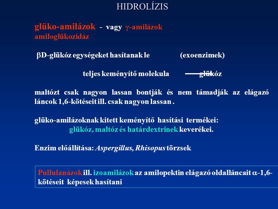 HIDROLÍZIS glüko-amilázok - vagy γ-amilázok amiloglükozidáz  D-glükóz egységeket hasítanak le (exoenzimek) teljes keményítő molekula glükóz maltózt c
